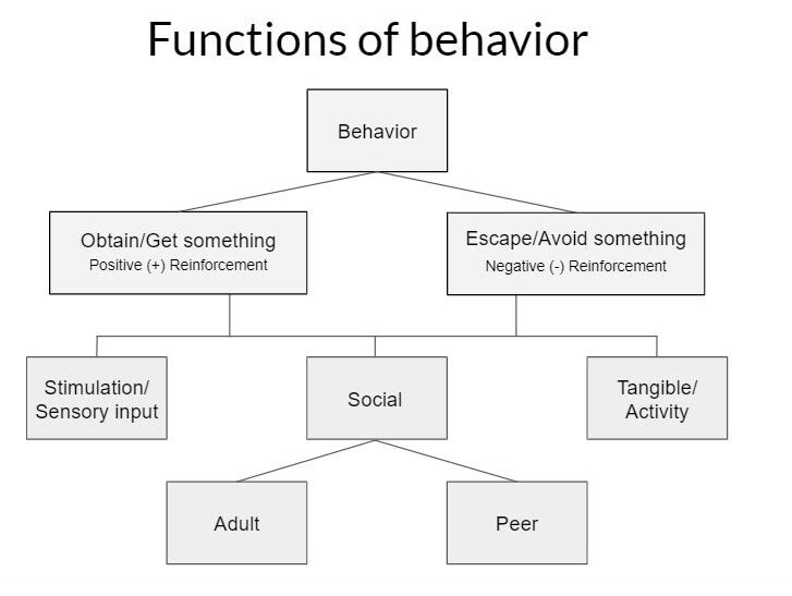 Behavior functions flow chart